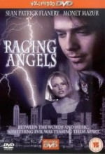Raging Angels (1995) afişi
