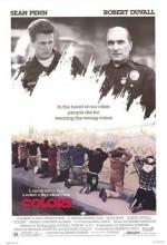 Renkler (1988) afişi