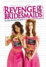 Revenge Of The Bridesmaids (2010) afişi