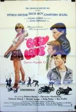 Roman Za'ir (1984) afişi