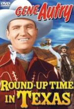 Round-up Time In Texas (1937) afişi
