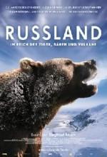 Russland - Im Reich Der Tiger, Bären Und Vulkane (2011) afişi