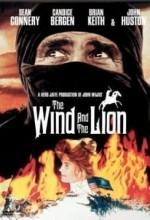 Rüzgarın Sesi (1975) afişi