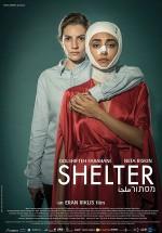 Shelter (2017) afişi