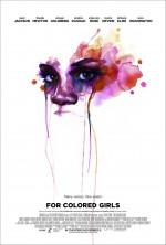 Renklerin Hikayesi (2010) afişi