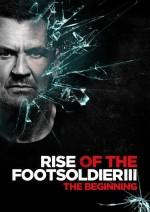 Rise of the Footsoldier 3 (2017) afişi