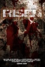 Risen (2008) afişi
