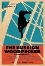 Rus Ağaçkakanı (2015) afişi