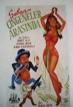 Şaban Çingeneler Arasında (1952) afişi