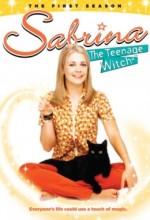 Sabrina (1996) afişi