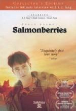 Salmonberries (1991) afişi