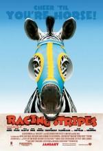 Şampiyon Zebra (2005) afişi