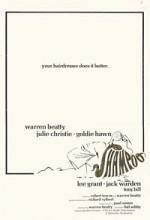 Şampuan (1975) afişi