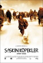 Şaşkın Köpekler (2004) afişi