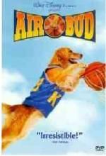 Sayı Kralı Buddy (1997) afişi