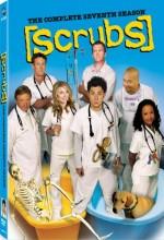Scrubs (2007) afişi