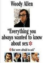 Seks Hakkında Bilmek İstediğiniz Her Şey (1972) afişi