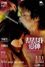 Serseri Bulut (2005) afişi