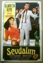 Sevdalım (1981) afişi