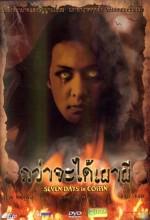 Seven Days In A Coffin (2003) afişi