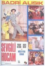 Sevgili Hocam (1972) afişi