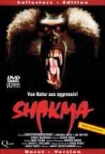 Shakma (1990) afişi
