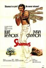 Shamus (1973) afişi