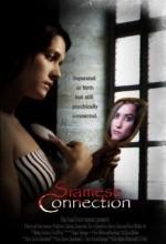 Siamese Connection (2008) afişi