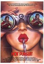 Sıcak Takip (1987) afişi
