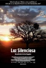 Sessiz Işık (2007) afişi
