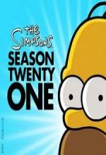 Simpsonlar (2010) afişi