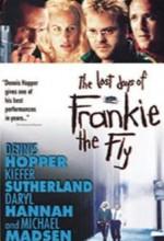 Sinek Frankie