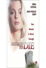 Sıradaki Cinayet (2002) afişi