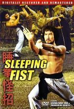 Sleeping Fist