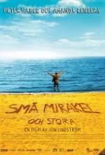 Små Mirakel Och Stora (2006) afişi