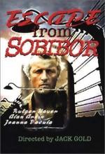 Sobibor'dan Kaçış (1987) afişi