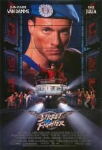 Sokak Dövüşçüsü (1994) afişi
