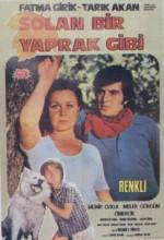 Solan Bir Yaprak Gibi (1971) afişi