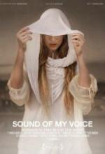 Sound Of My Voice (2011) afişi