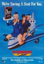 Stewardess School (1986) afişi