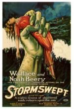 Stormswept (1923) afişi