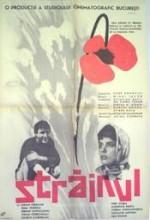 Stranger (1964) afişi