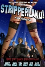 Stripperland (2010) afişi