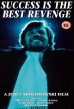 Success Is The Best Revenge (1984) afişi