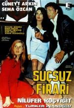 Suçsuz Firari (1966) afişi