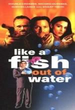 Sudan Çıkmış Balık (1999) afişi