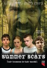 Summer Scars! (2007) afişi