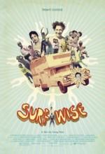 Surfwise (2007) afişi