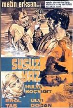 Susuz Yaz (1964) afişi