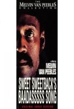 Sweet Sweetback's Baadasssss Song (1971) afişi